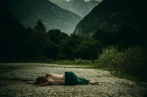 Bibora Photography