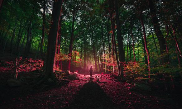 Sleepwalker by Ibai